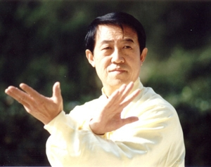 Maitre Art Martiaux Chinois Of Taiji Quan Taichi Chuan Style Chen Biographie De Grand